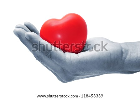 a hand holding a red heart on a white background