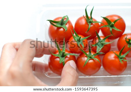 A hand picking up a fresh tomato