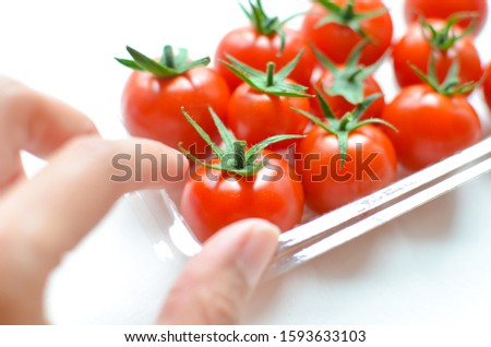 A hand picking up a tomato