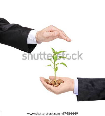 A hand protecting a green plant growing from pile of coins isolated on white background