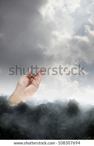 A hand reaching up to a dramatic cloudy sky from a misty rainforest treeline for the concept of environmental friendly lifestyle.