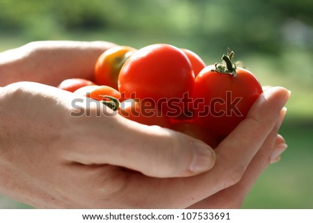 A handful of cherry tomatoes