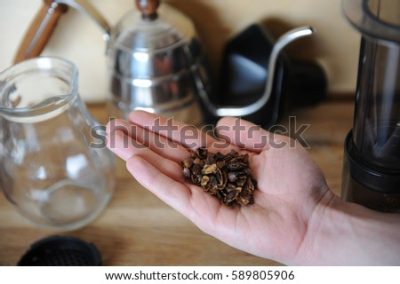 Shutterstock A handful of dried coffee berries cascara on the palm. Drip Coffee Maker, glass jug server in the background on wooden texture
