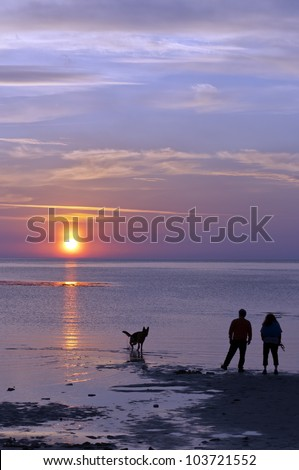 A happy couple take their dog for a walk on the beach against the backdrop of a romantic sunset