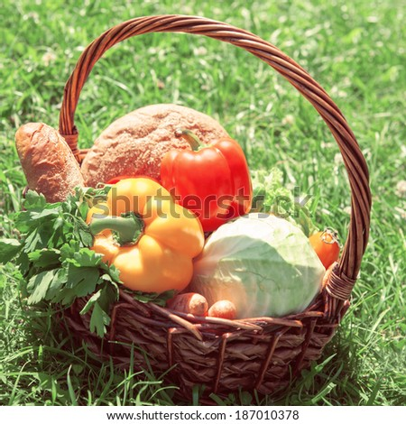 A harvest of season vegetables and bread in a wicker basket on green grass at garden. Retro filtered photo