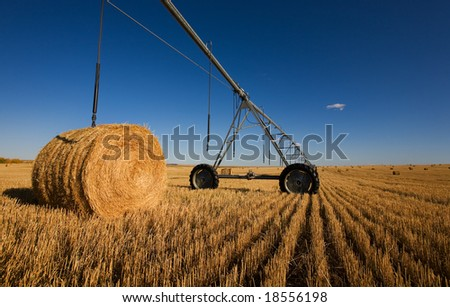 A harvested wheat field with a pivot and bales