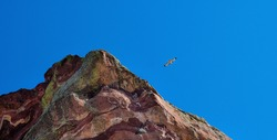 A hawk flying through the mountains with blue sky