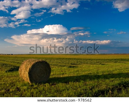 A hay bale set against a cloud filled with puffy clouds. - stock photo