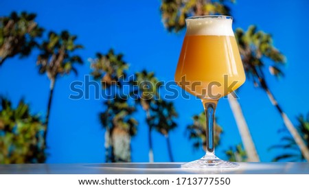 A hazy India pale ale craft beer in a Teku Glass with tropical palm trees and blue sky. Stok fotoğraf ©