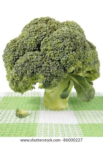 A head of broccoli on a checkered napkin