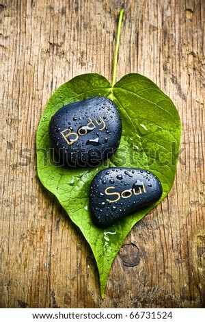 a healing stone with the word soul and body lying on a green leaf over an old wood like a concept of wellness with alternative natural methods