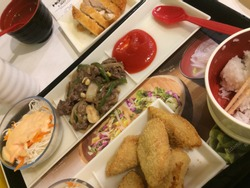 A healthy Japanese Food perfect colaboration Meat, Chicken, Salad and Mayonise