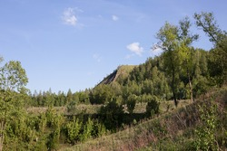 a heap of vegetation. landscape in Poland with green trees and mining heap in background on a sunny summer day