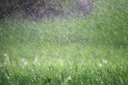 A heavy raining in the summer