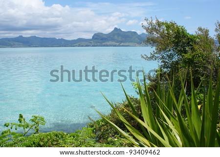 A hidden corner of the world - Mauritius - stock photo