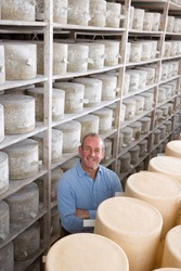 A high angle portrait shot of a smiling cheese maker standing in the cellar with aged and young cheddar cheese wheels.
