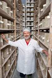 A high angle portrait shot of a smiling senior cheese maker standing between the shelves of aged cheddar cheese wheels in a cellar.