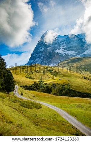 A high mountain meadow in the Swiss Alps near Lauterbrunnen and Kleine Scheidegg Stockfoto ©