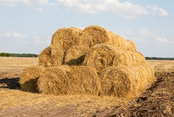 A high pile of dry haystacks in a rural area