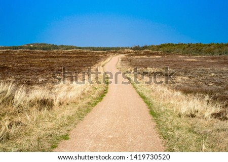 A hiking trail in National Park Thy on the Danish North Sea coast #1419730520