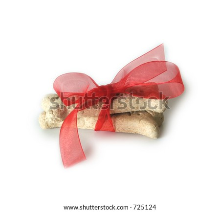 A holiday gift for a pooch, on isolated background.