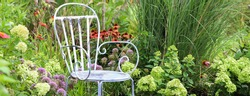 A horizontal banner of a vintage blue metal chair in quiet smot in the garden, surrounded by lime green ;hydrangeas and orange coneflowers and purple allium with tall miscanthus morning light