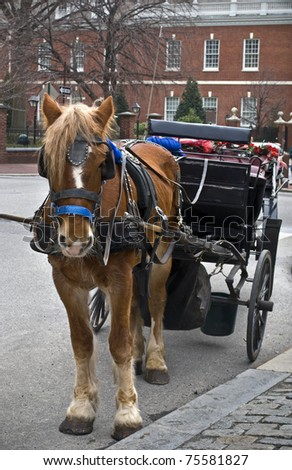 """A horse and carriage in """"old city"""" Philadelphia outside of Independence Hall."""