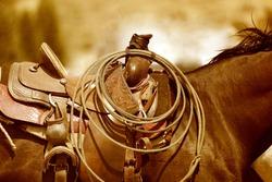 A horse and saddle in a sepia tone.