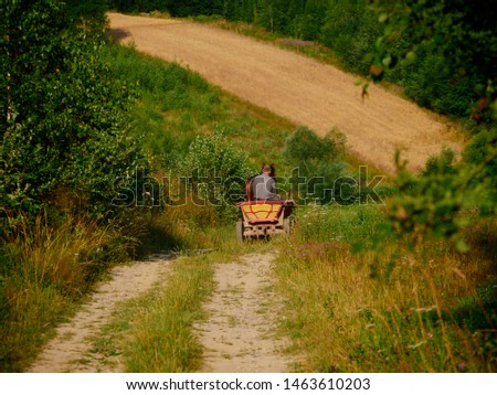 A horse cart among fields in the early morning hours of the morning #1463610203