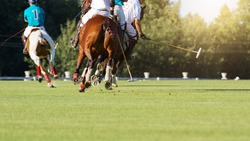 A horse players with a mallet in game action, back view.