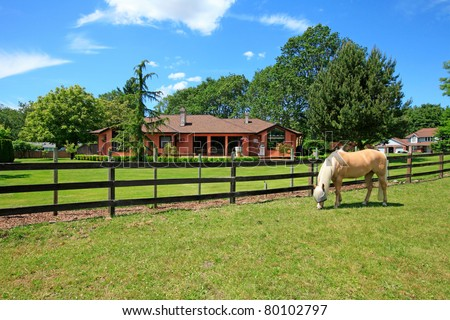 A horse ranch in Washington State, USA with horse standing along the wood fence and the house in the background.