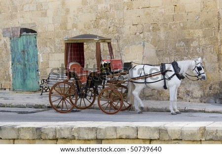 A horse waiting for it's next passenger. Shot in Malta. - stock photo