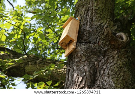 A house for birds and bats in the park