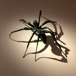 A huge black spider statue on a wall. Shadows and lighting