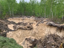 A huge hole in the forest among the trees. A pit in a birch grove. Sand quarry in a young forest.