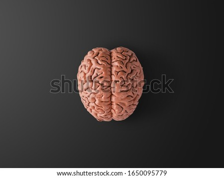 A human brain on black background