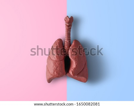 A human lung on pink and blue background