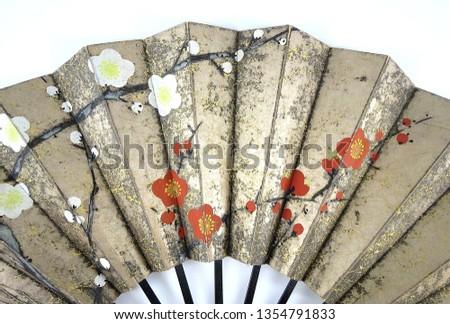 A Japanese folding fan #1354791833