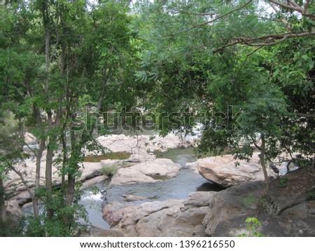 A jungle stream flows through the Chinnar wildlife sanctuary #1396216550