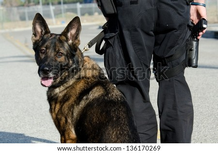 a k9 officer with his partner during their patrol shift