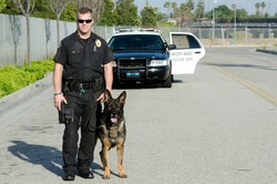 A K9 police officer standing with his partner with their patrol car in the background.