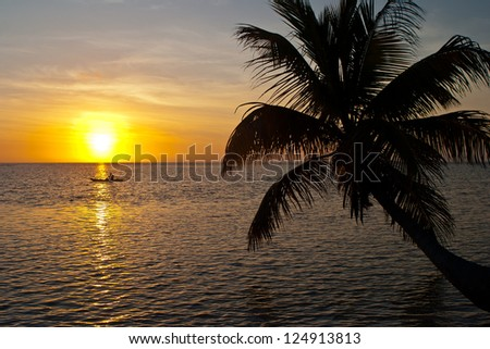 A kayaker paddles near a  low-lying sandy island with coconut palms off Belize at sunset.