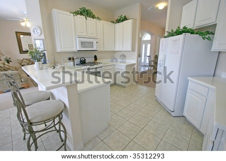 stock-photo-a-kitchen-in-a-house-in-florida-35312293.jpg