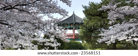 A korean pavilion partly behind blooming trees.