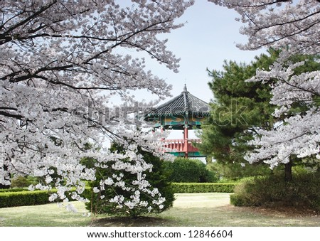 A Korean pavillion in a park behind trees.