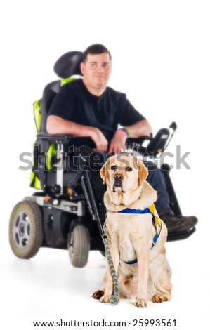 A labrador guide dog with his proud owner
