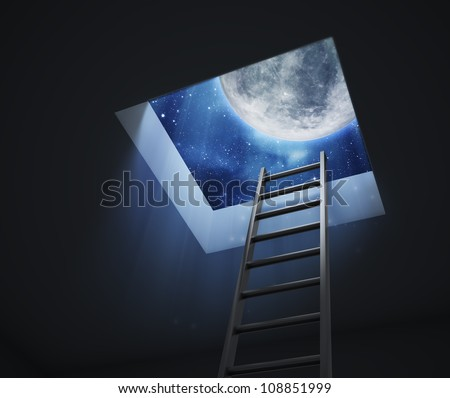A ladder leading to an opening with visible night sky with the Moon and stars
