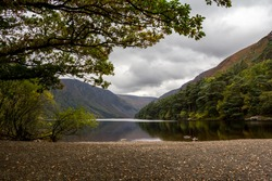 A lake in a valley overlooked by trees in the Wicklow mountains, Ireland.