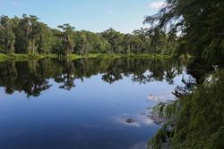 a lake in Wakulla Springs Florida USA