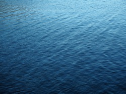 A lake lost in patagonia. Deep blue, fresh water, an explotion of life